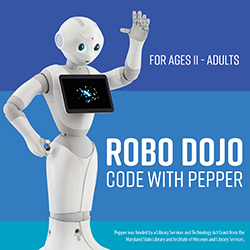 Robo Dojo: Code with Pepper
