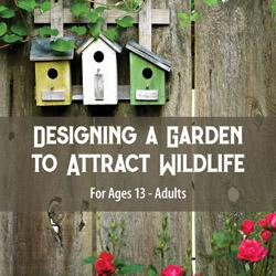 Designing a Garden to Attract Wildlife