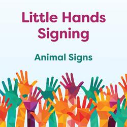 Little Hands Signing: Animal Signs